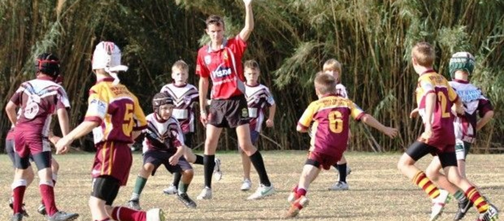 Sharks Primary Schools Knockout