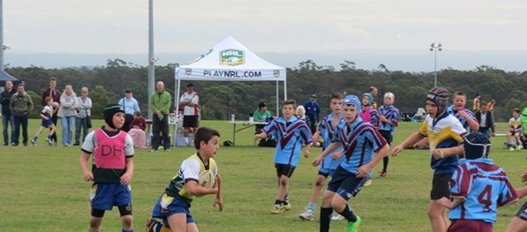 SHARKS ALL SCHOOLS | Primary KO