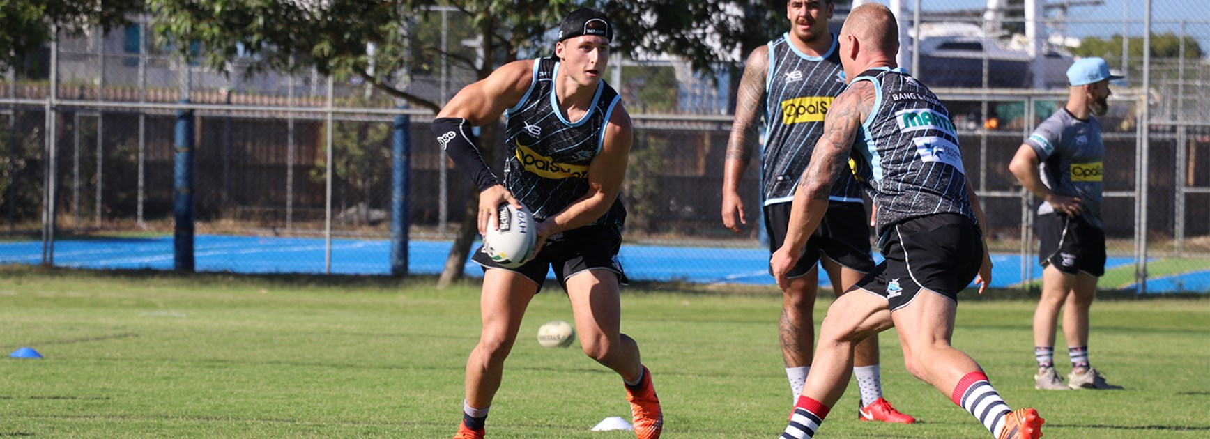 Young Sharks in NSW Pathway squads