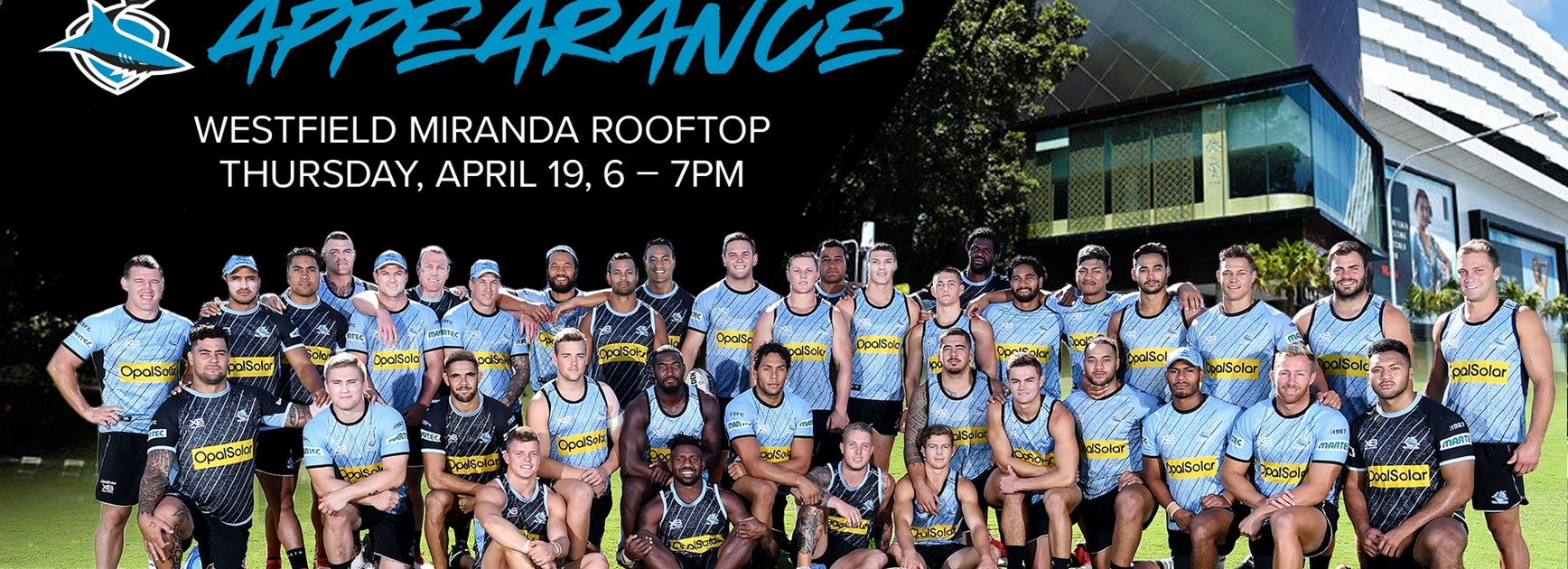 Meet the Sharks at Westfield