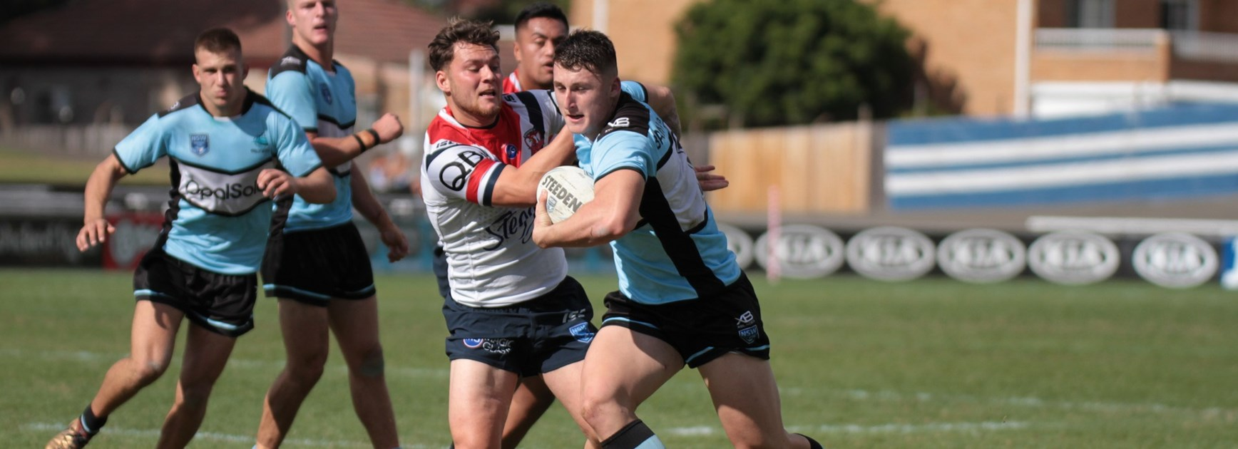 Young Sharks earn rep honours