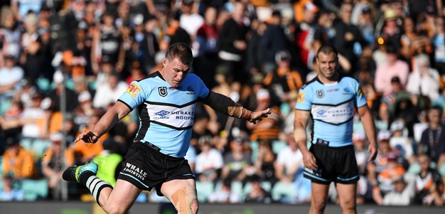 Sharks take down the Tigers in do-or-die clash