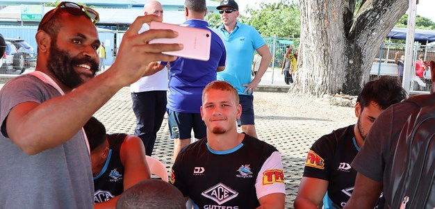 Young Shark with PNG ties
