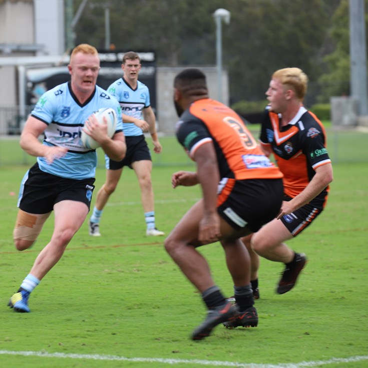 Big second half for Ball Sharks in Tigers win